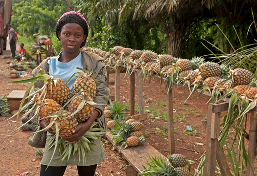 <em>Judi Baker: Girl with Pineapples</em>, Cameroon