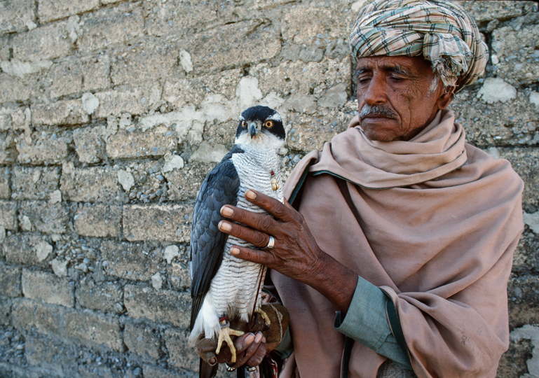 <em>Falconer with goshawk. Punjab Province, Pakistan</em>, Rich Clark