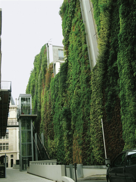 Green wall along Rue d'Alsace, Paris, France, 2008.  By Patrick Blanc.