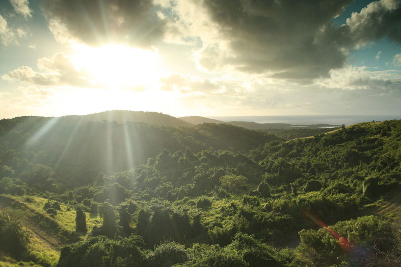 Brian Jensen: View from Monte Carmelo, Vieques