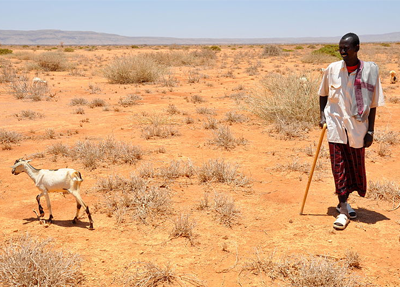 Aden Jama lost 180 sheep to drought in Somalia/ Oxfam East Africa