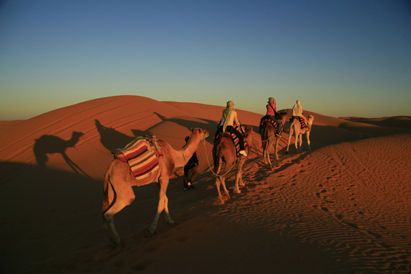 <em>Sunset Camel Safari - Tunisia</em>, Jeremy Jowell