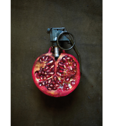 Fruit of the Boom (Granate), 2010